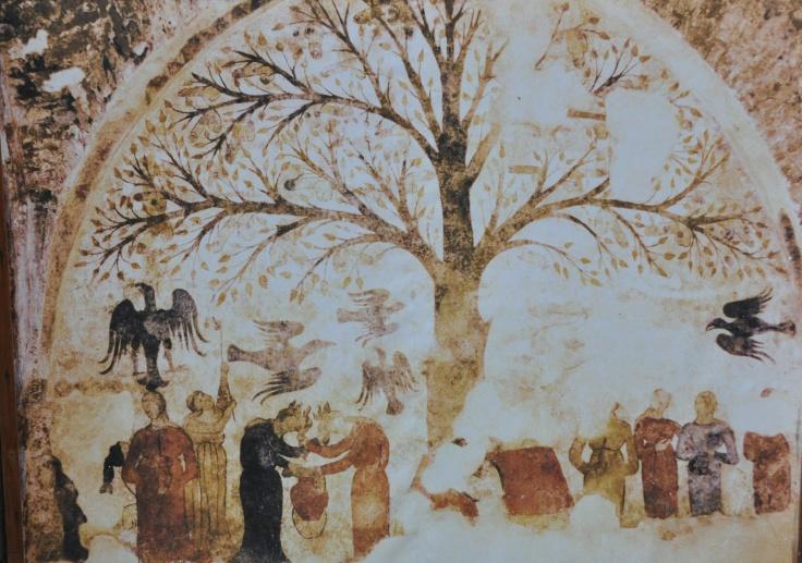 massa-albero-della-fecondita-stefano